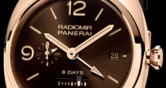 PANERAI Radiomir 8 Days GMT PAM00395